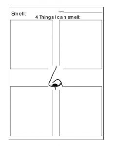 5 senses worksheet letters page 001