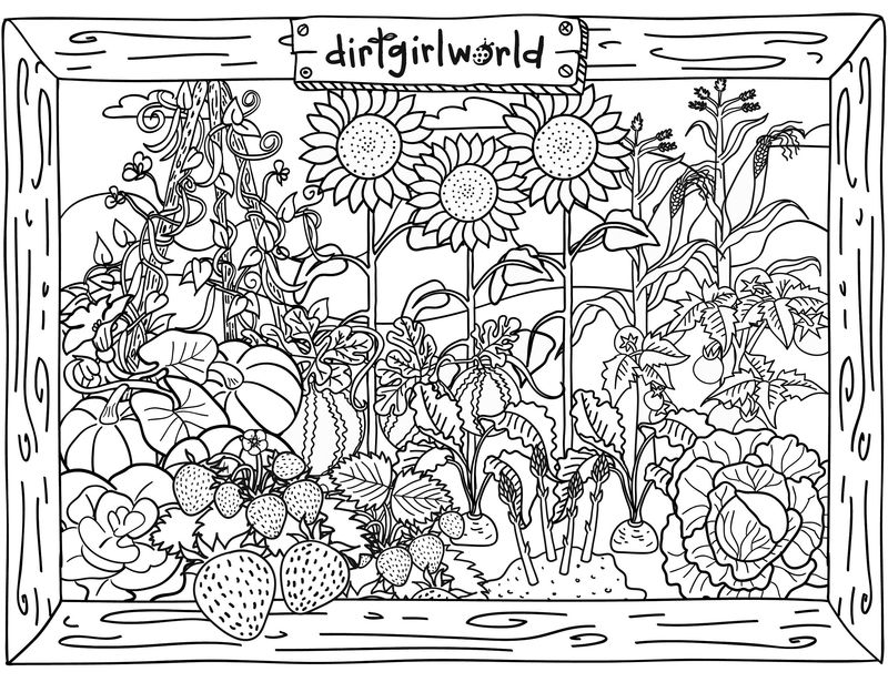 Activity Sheets For Teenagers Garden Activity 1
