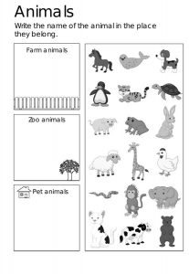 Activity worksheets for kids animal