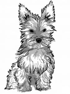 Adult coloring page realistic dog