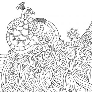 Adult free printable coloring pages mindfulness 001