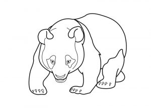 Adult panda coloring pages