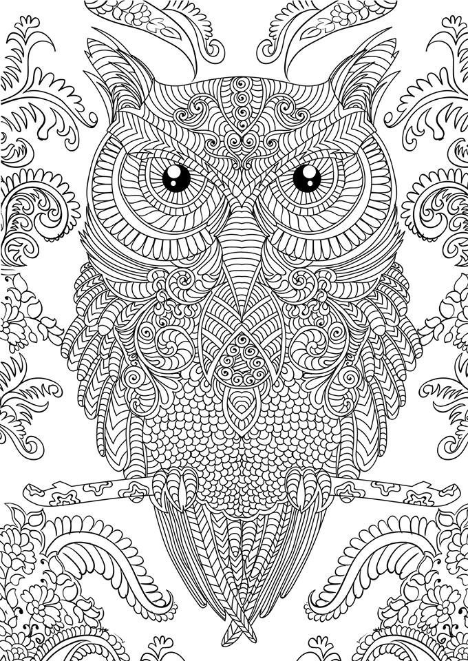 Advanced Adult Owl Coloring Pages - Coloring Sheets