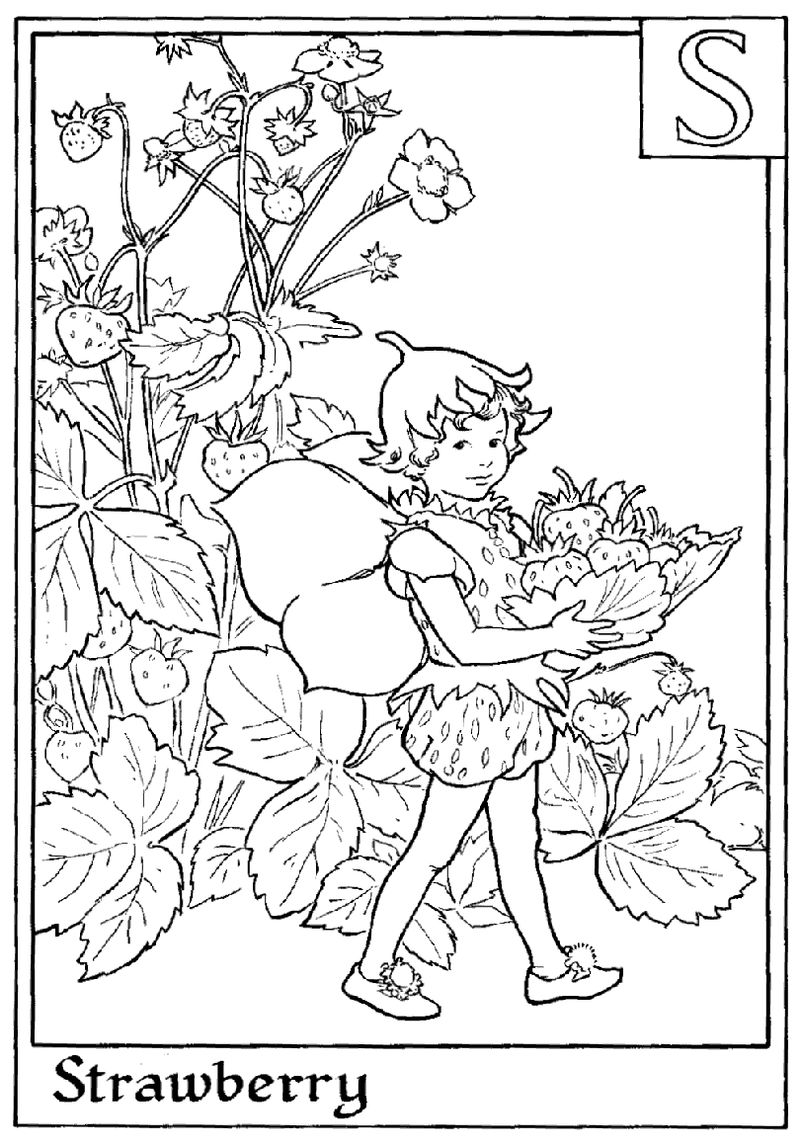 Alphabet Fairy Strawberry Coloring Page