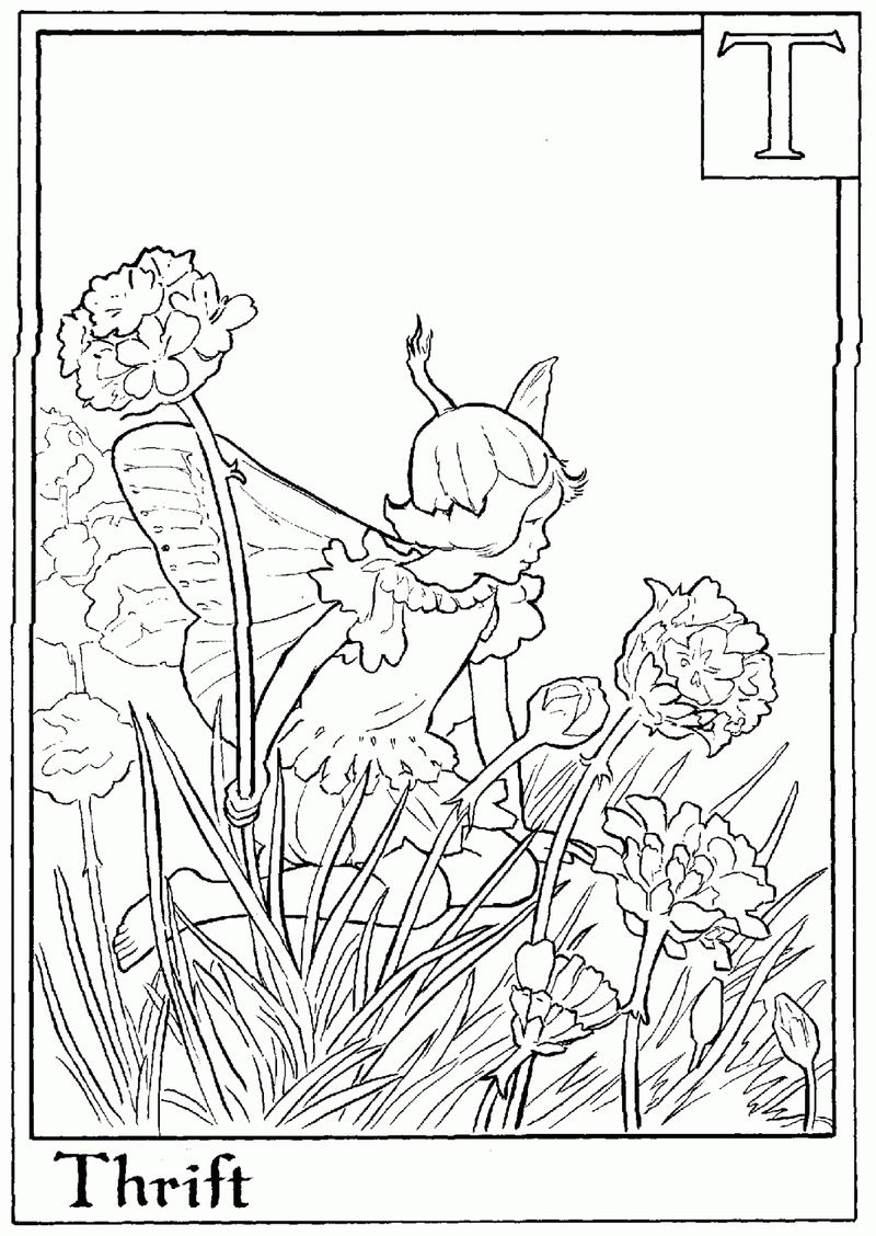 Alphabet Fairy Thrift Coloring Page