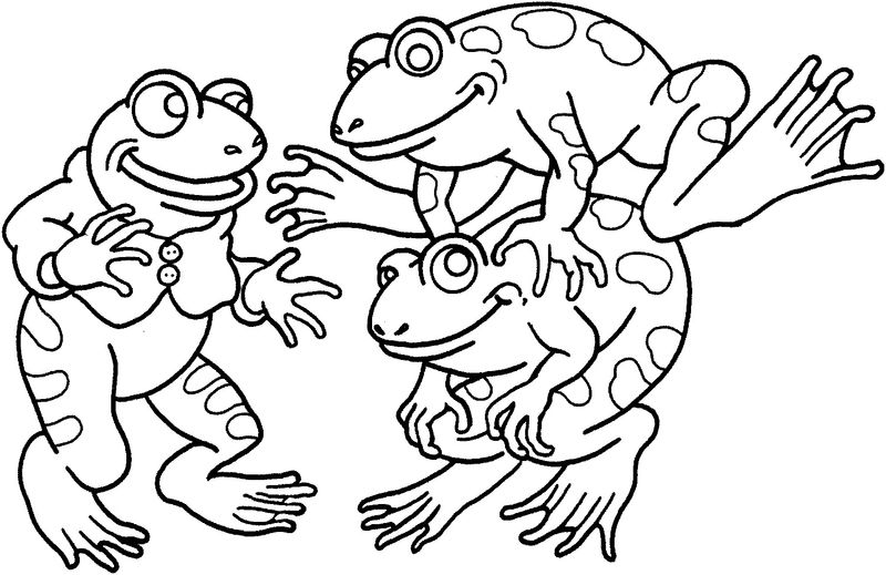 Amphibians Printable For Kids Frog Coloring