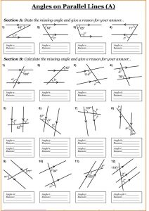 Angles year 7 maths worksheets