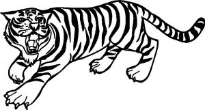 Angry tiger coloring pages