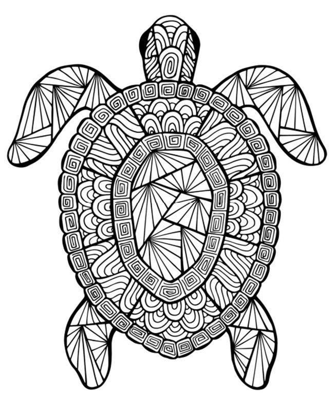 Animal Coloring Pages For Adults Free Turtle 001