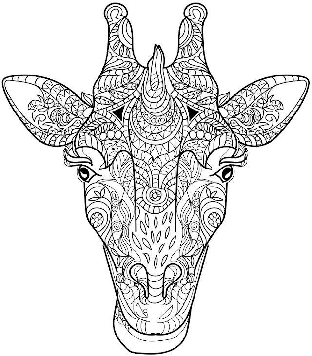 Animal Coloring Pages For Adults Giraffe 001