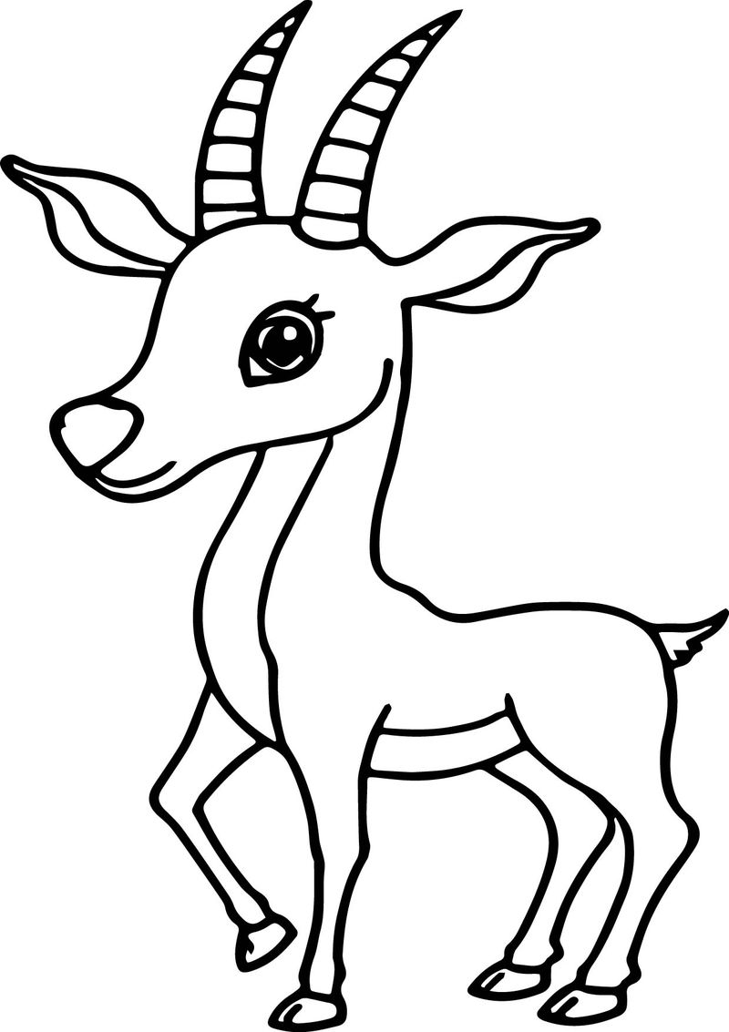 Antelope Coloring Pages