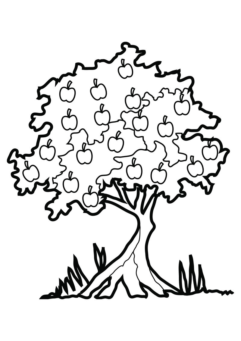 Apple Tree Coloring Page 1