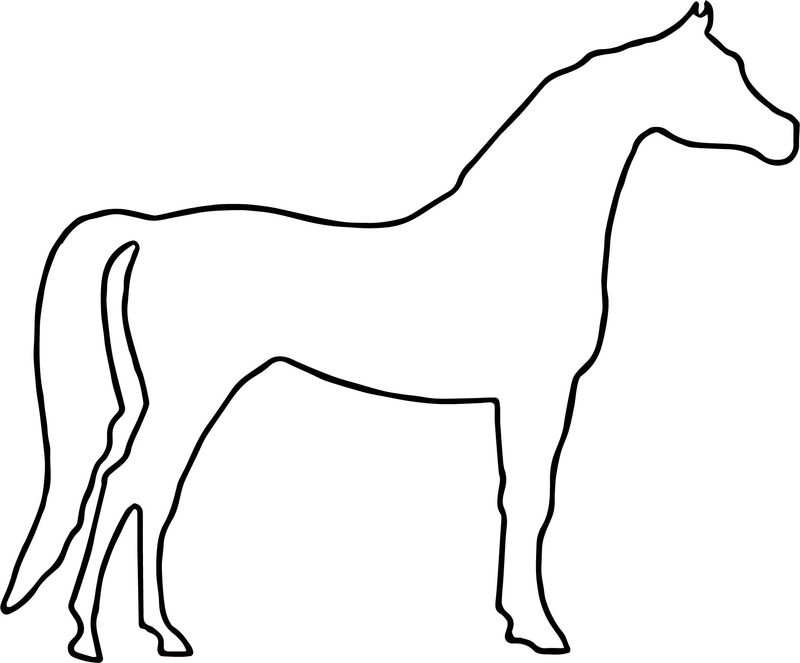 Arabian Horse Outline Coloring Page