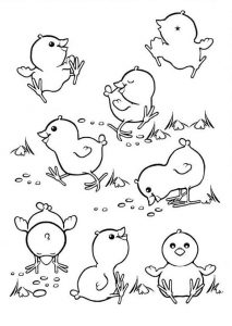 Baby chicks coloring pages
