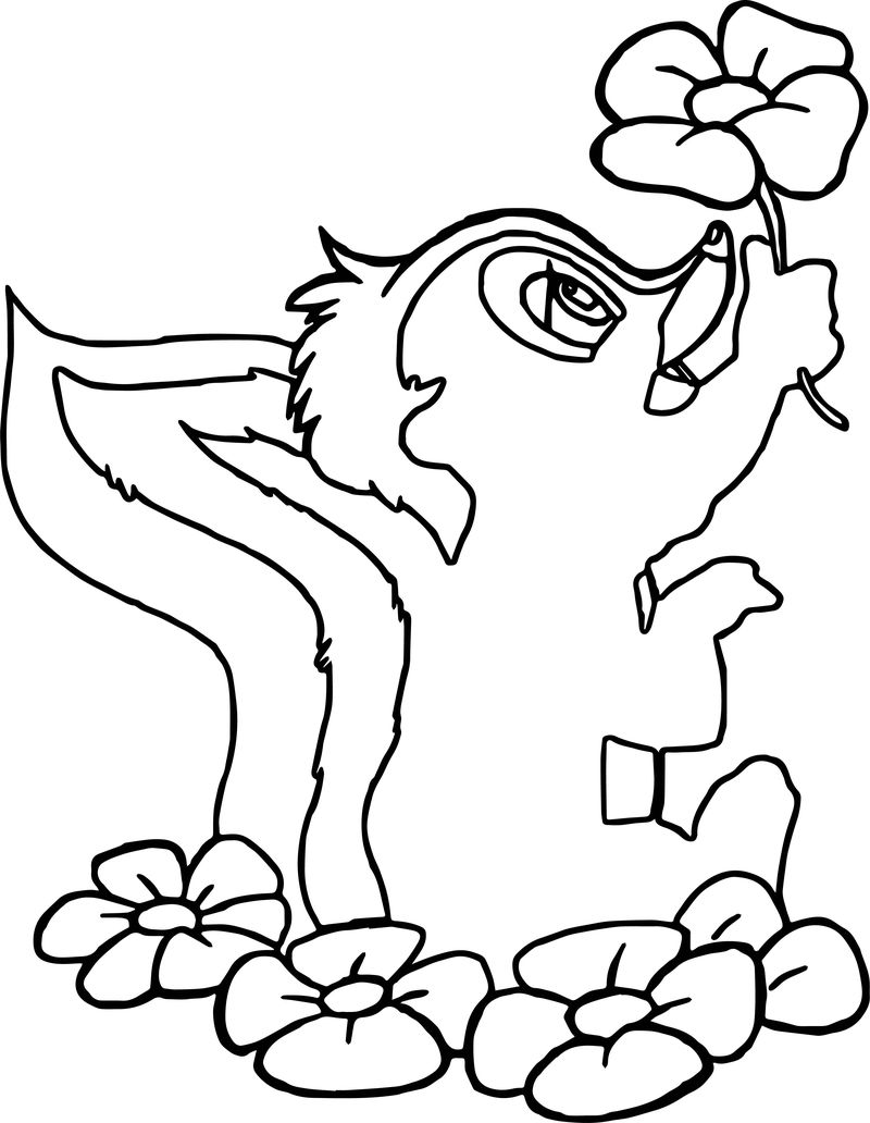 Bambi Flower The Skunk Flower Coloring Pages