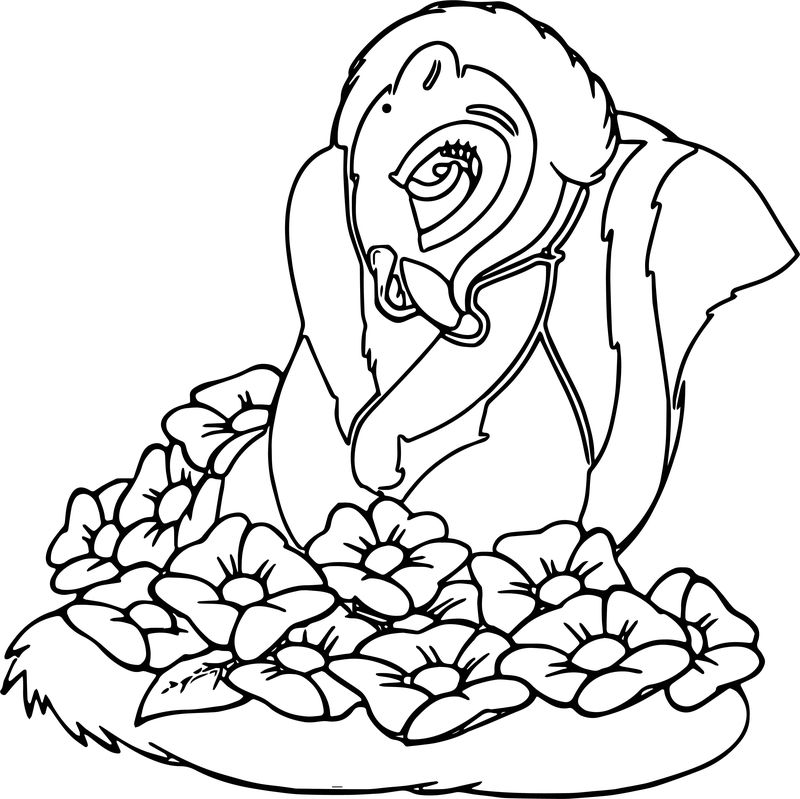 Bambi S Flower The Skunk Flower Coloring Pages