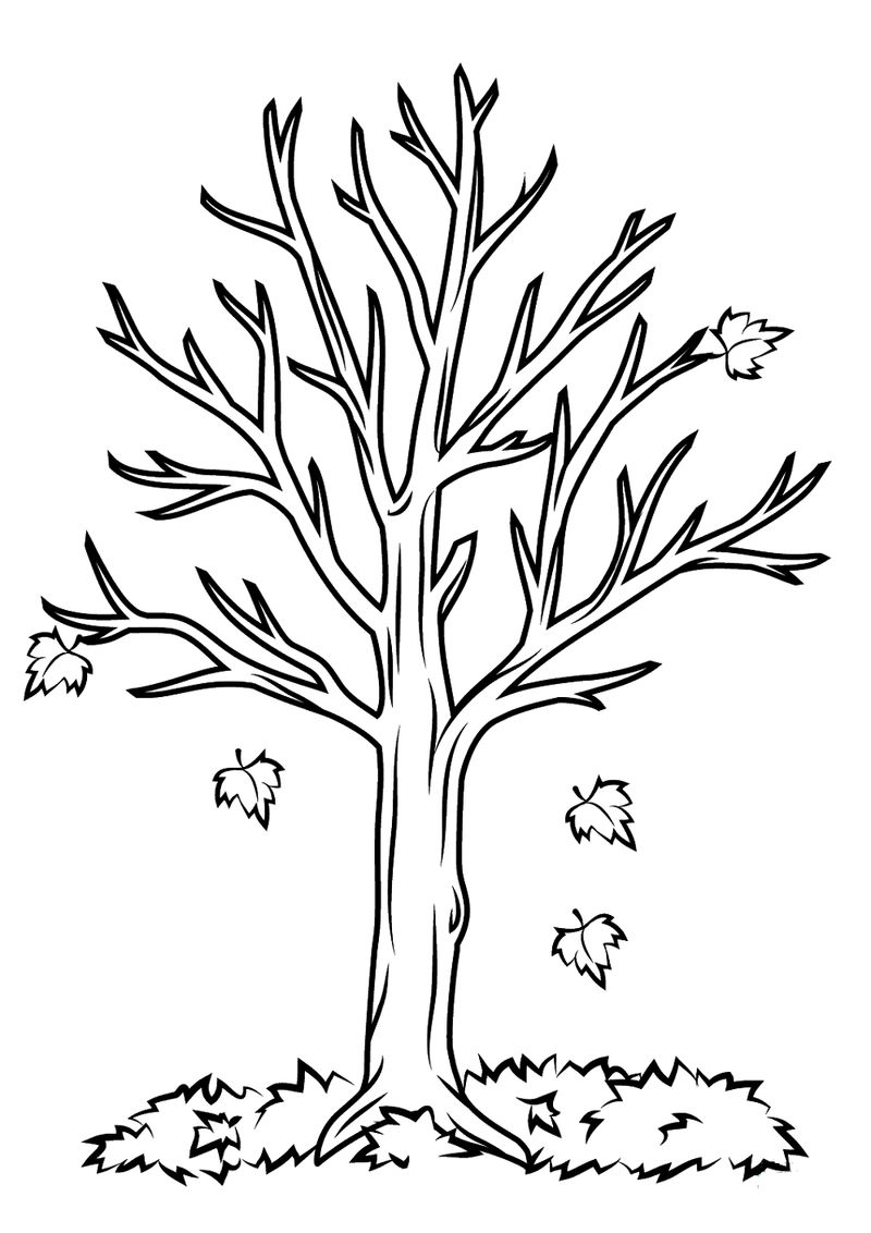 Bare Tree Coloring Page Easy