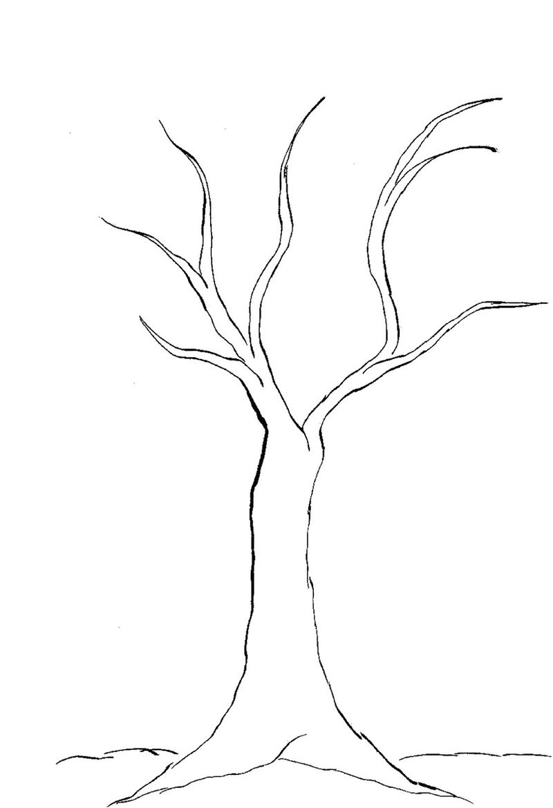 Bare Tree Coloring Page Template - Coloring Sheets