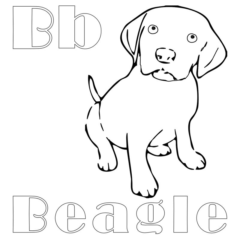 Beagle Coloring Pages Kids