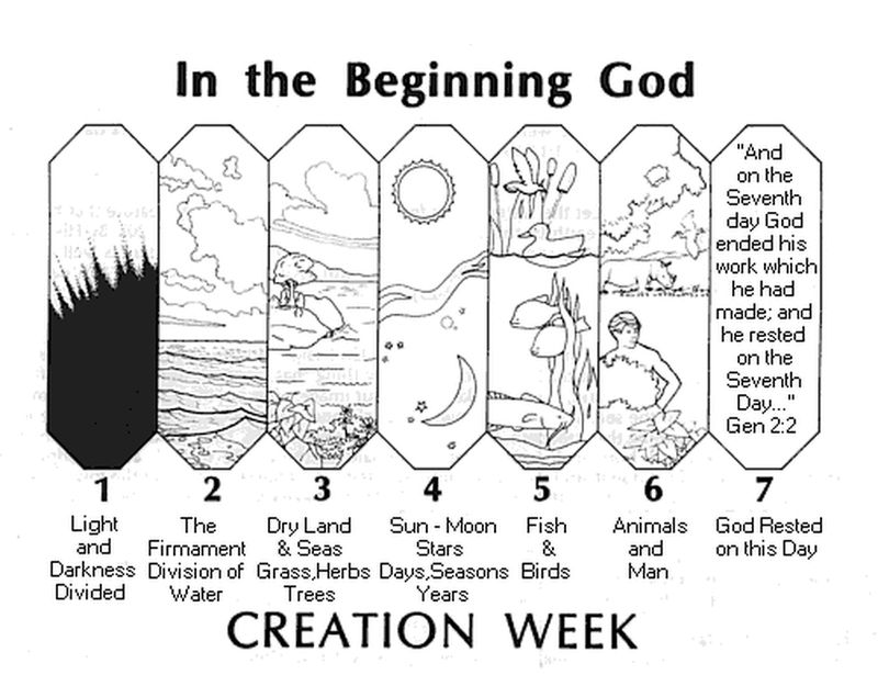 Bible Coloring Pages Creation Week