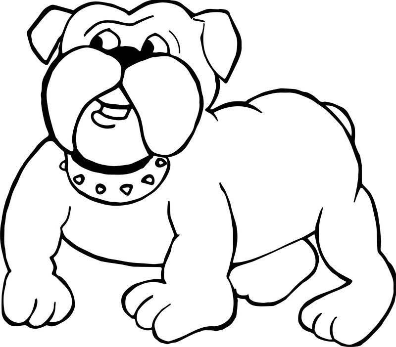 Bull Dog Puppy Coloring Page