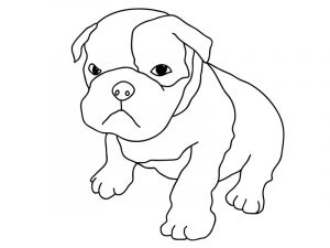 Bulldog puppy coloring pages