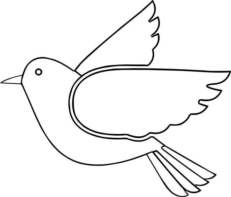 But Bird Coloring Page