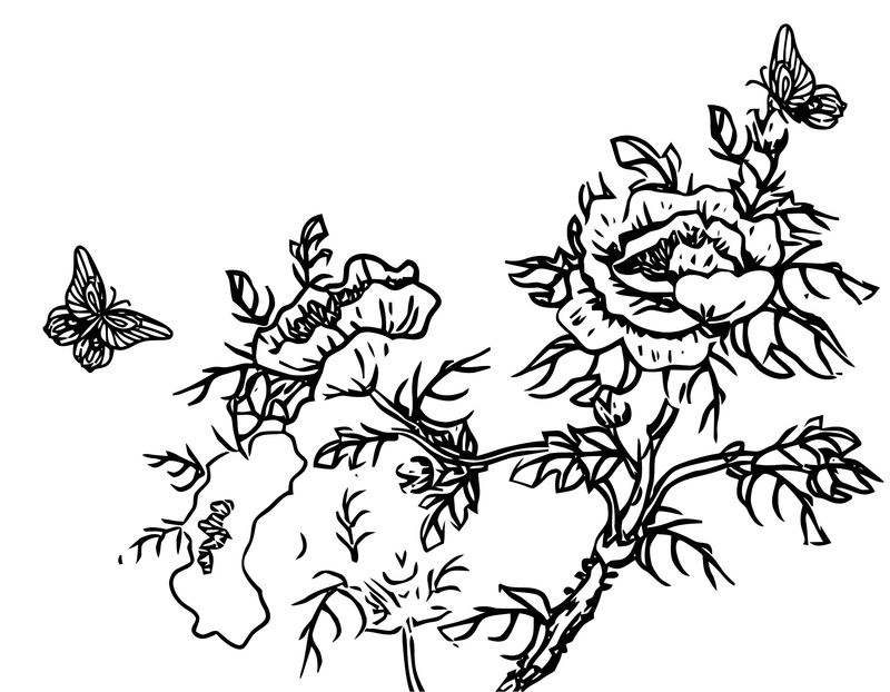 Butterfly Flowers Branch Coloring Page