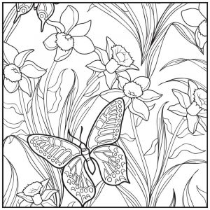 Butterfly in garden coloring page