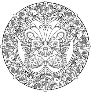 Butterfly mandala coloring page for adults