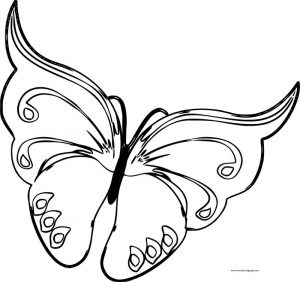 Cartoon blue butterfly clipart coloring page