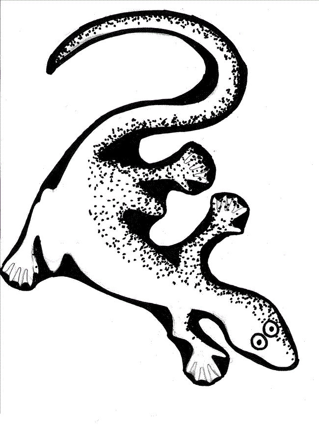 Cartoon Lizard Coloring Pages