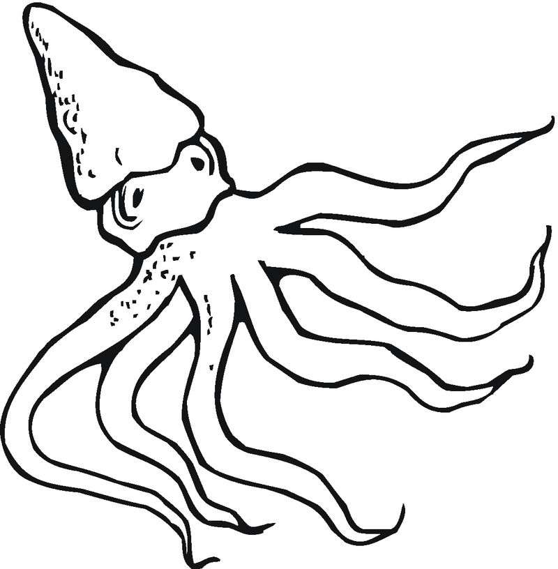 Cartoon Octopus Coloring Pages