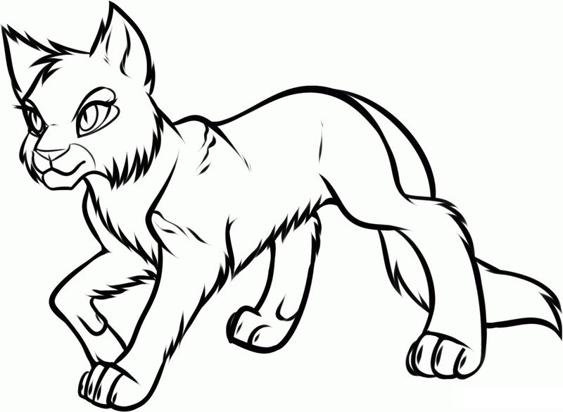Cat Coloring Pages For Adults 001
