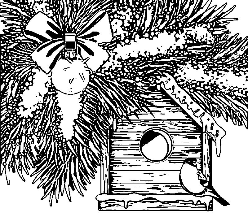 Christmas Bird House Coloring Page
