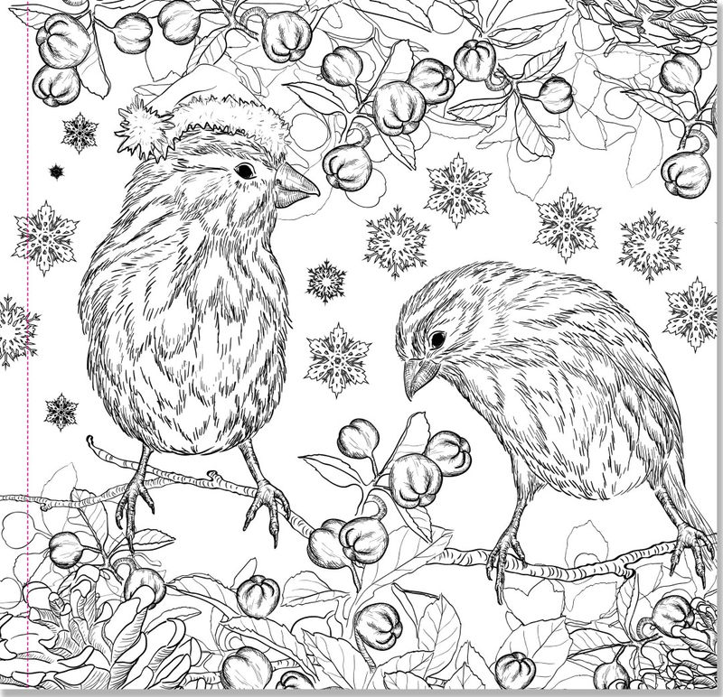 Christmas Birds Coloring Pages For Adults