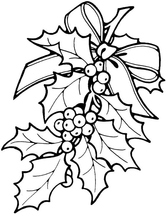 Christmas Holly Coloring Pages 1