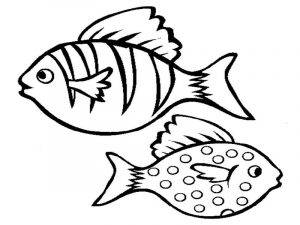 Color pages of fish printable