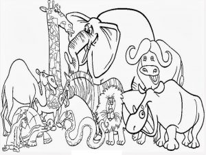 Coloring books for kids animal printable 001