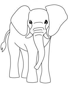 Coloring page of an elephant