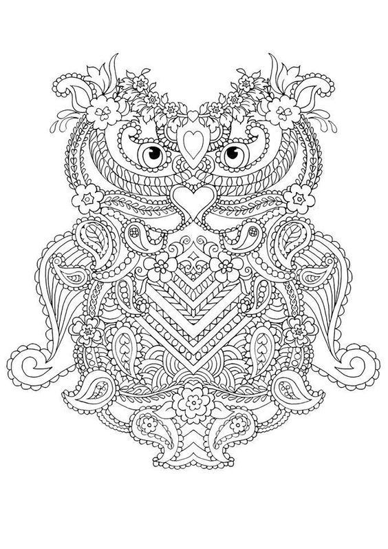 Coloring Pages For Adults Abstract Owls