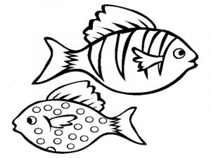 Coloring pages of fishes
