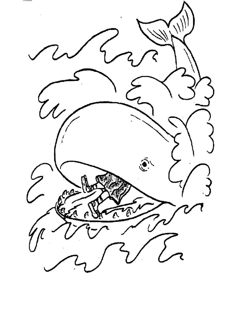photo regarding Jonah and the Whale Printable called Coloring Webpages Of Jonah And The Whale - Coloring Sheets