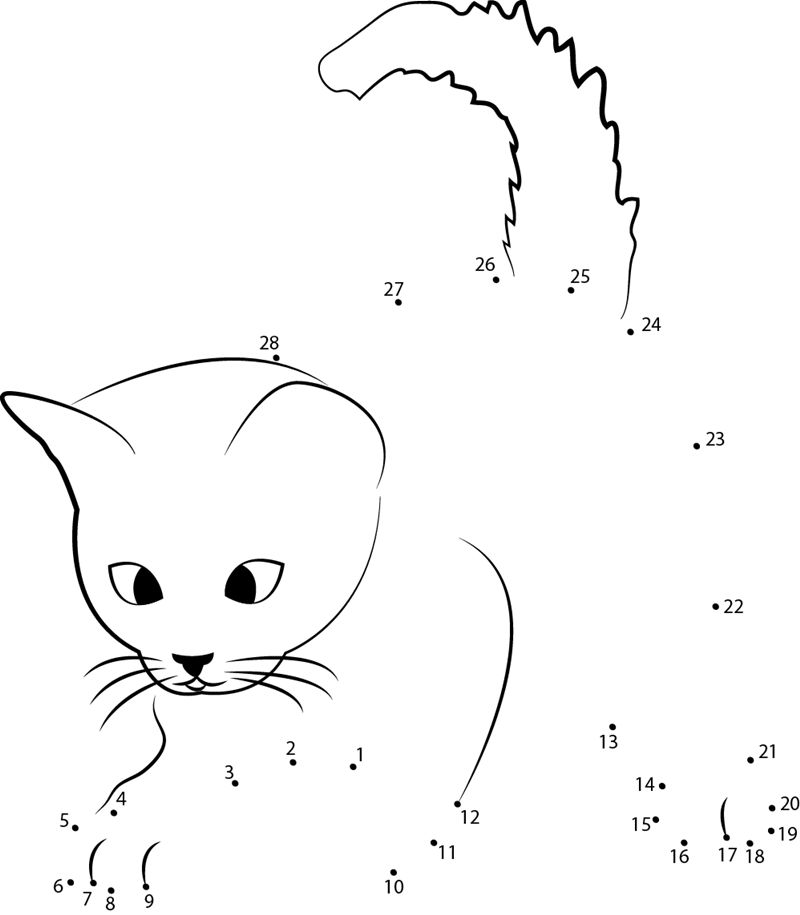 Connect The Dots Animal Cat
