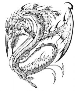 Cool dragon adult coloring page