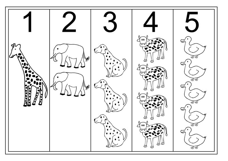 Count By 5 Worksheet With Animals