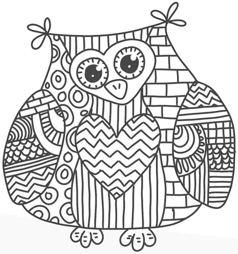 Country Owl Coloring Page