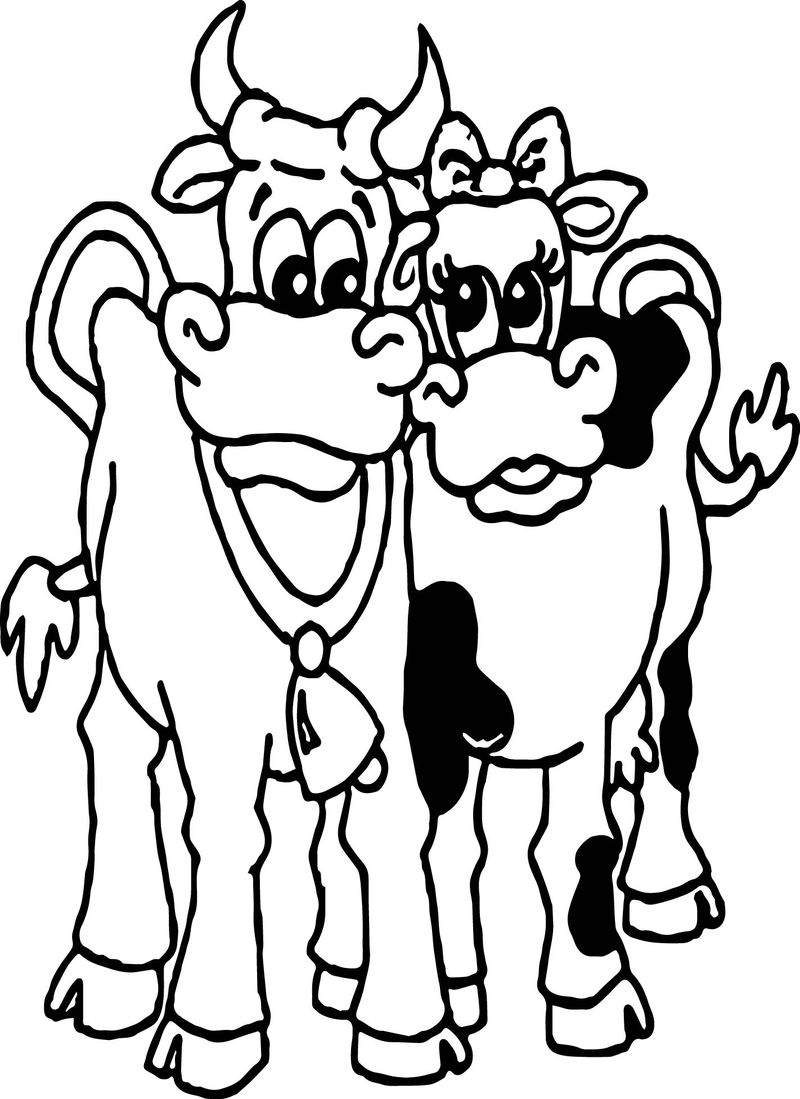 Cow Couple Family Coloring Page
