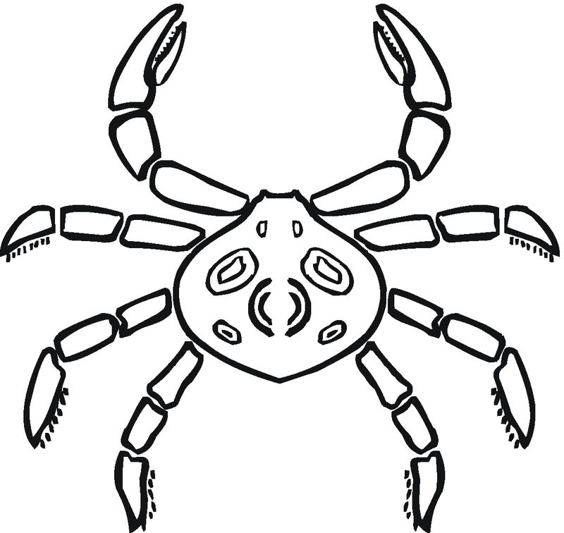 Crab Coloring Pages Kids