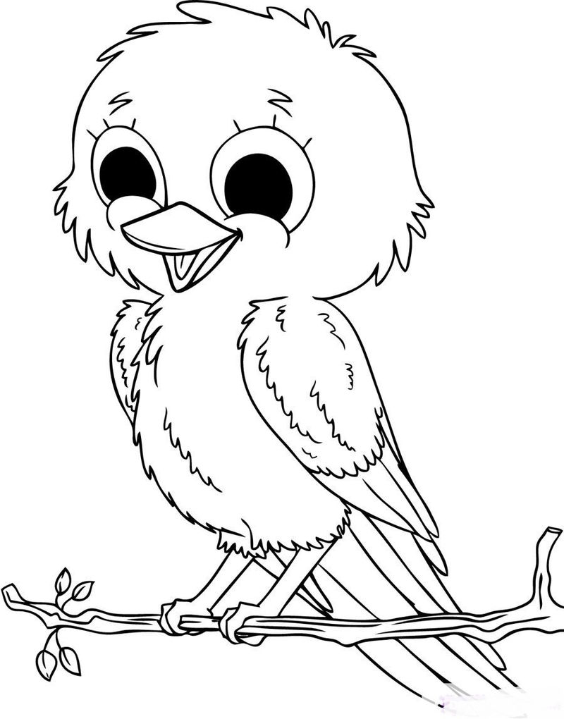 Cute Coloring Pages Of Bird